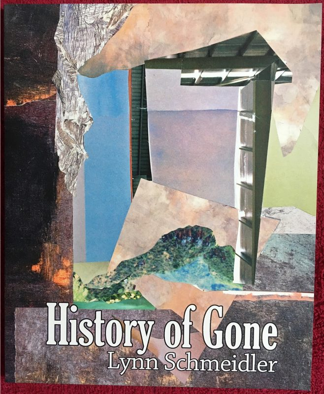 """History of Gone"" by Lynn Schmeidler, Veliz Books, 2018"