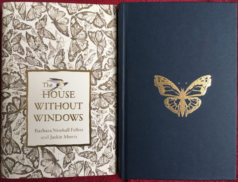 """The House Without Windows"", Hamish Hamilton, 2019. Introduction and illustrations by Jackie Morris"